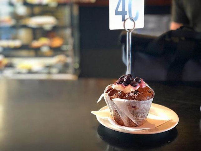 Freshly baked berry muffin before a full day at Rottnest Island.