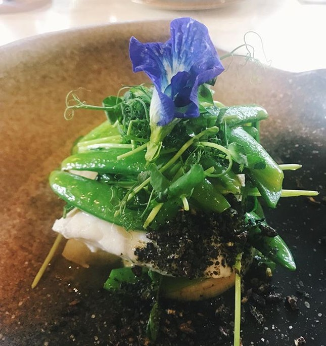 Barramundi steamed in butter and topped with furikake, pulut hitam crisps, pea shoots and blue pea flowers 🐠🐠🐠