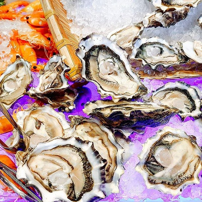 Free flow oysters that were barely touched at the Festive Christmas lunch buffet (WHY?).