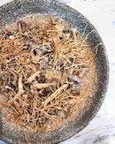 risotto | dashi | mushroom textures [$18]