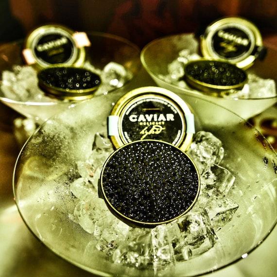 Caviar, Caviar, Caviar!