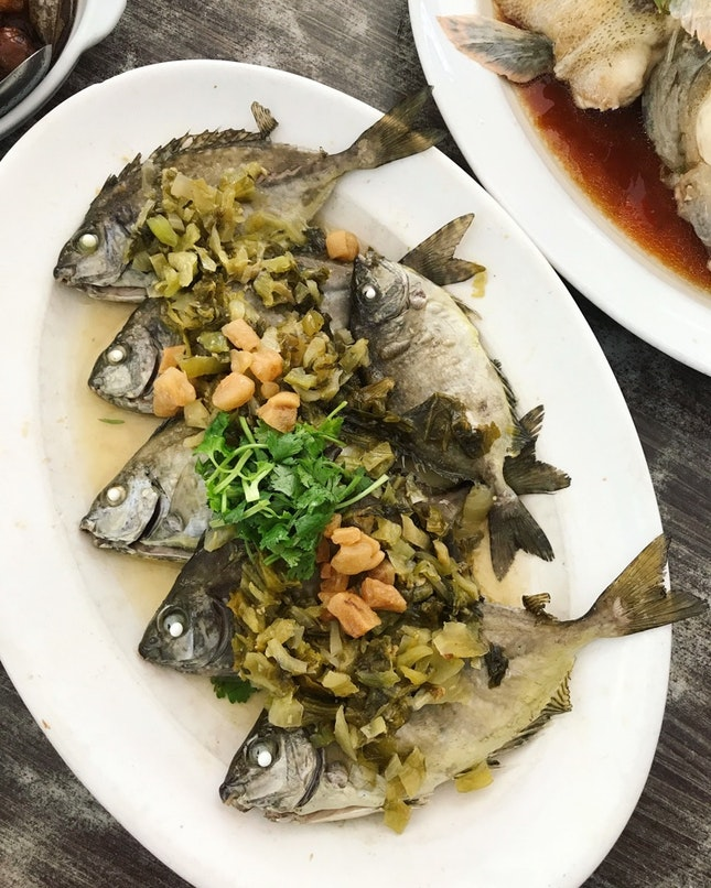 Steamed White-Spotted Rabbitfish ($25)