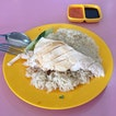 Steamed Chicken Rice from Sin Kee Famous Chicken Rice .
