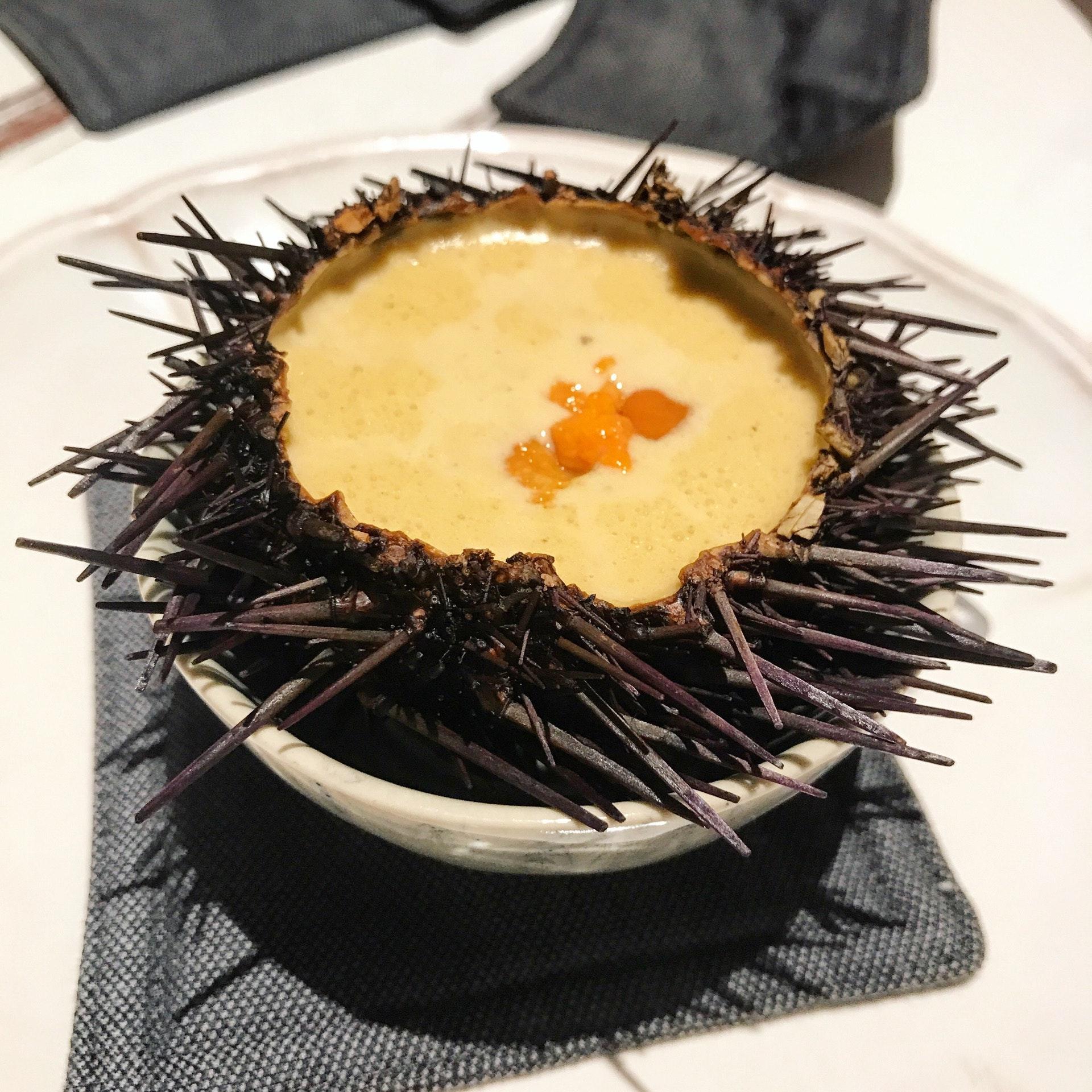 Off The Menu: Urchin