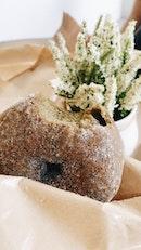 Hojicha & Matcha Donuts