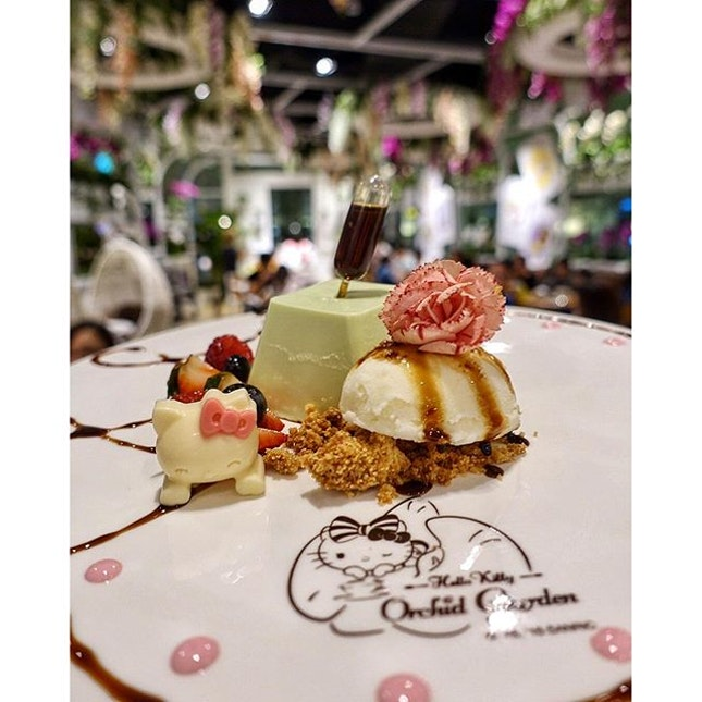 📍hello kitty orchid garden [changi airport] • pandan pana cotta • utterly wobbly when you shake it.