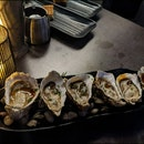 Oysters $23