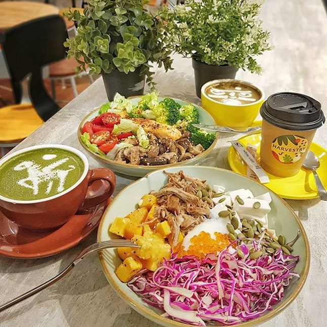 Harvestry * Newly opened Grain/Salad Bowl at the ❤ of CBD area located at International Plaza just beside CBTL ~ A variety of healthy options for Carbs like quinoa, couscous, brown rice, barley, nuts, pumpkin seeds etc companied w/ delicious Protein wagyu beef, slow braised pork, sous vide chicken, ginger tofu & meaty more exciting dishes!!
