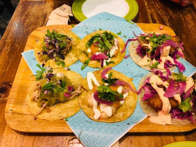 Tacos Mania!!