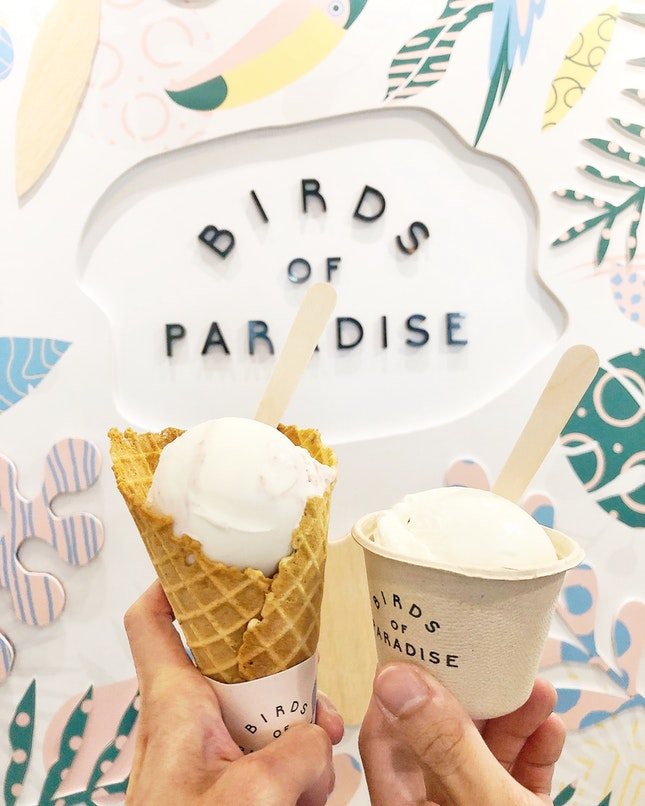 Delightfully Unique & Pleasant Botanical, Al-natural Gelato🍦🌿🙃