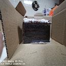 Mississippi Smores Cake