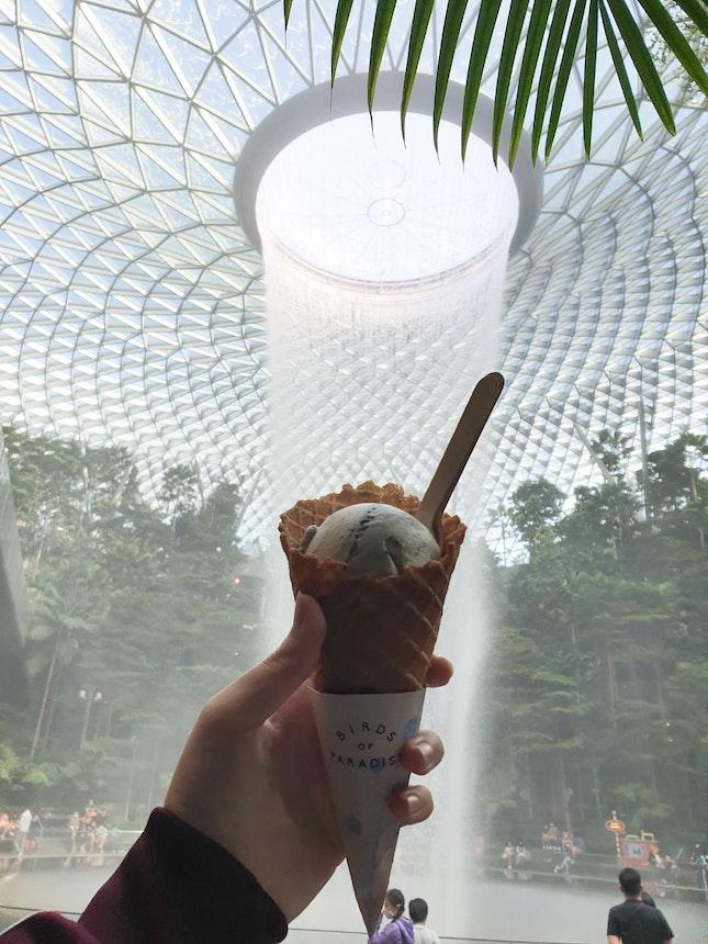 Roasted Sesame Ice Cream