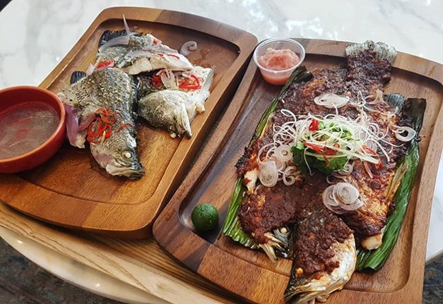 2 sizable seabass for $10.90, topped up $8/piece(500g) dine in cooking fee in steamed and sambal style.
