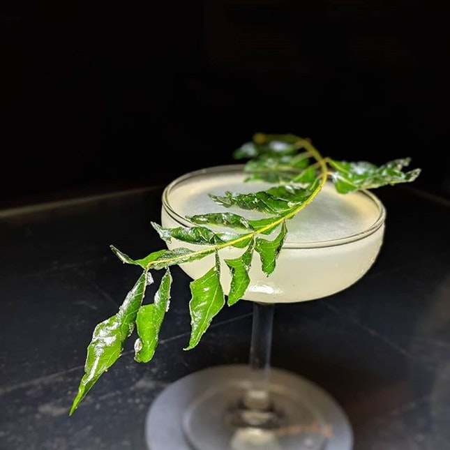 Fatback Ears Down: The Last Crusade (Never Never Triple Juniper Gin, exotically-spiced lime cordial, black pepper tincture, lime) from Idlewild (@idlewildsg), the air travel-inspired bar concept newly-launched at InterContinental Singapore (@interconsin).