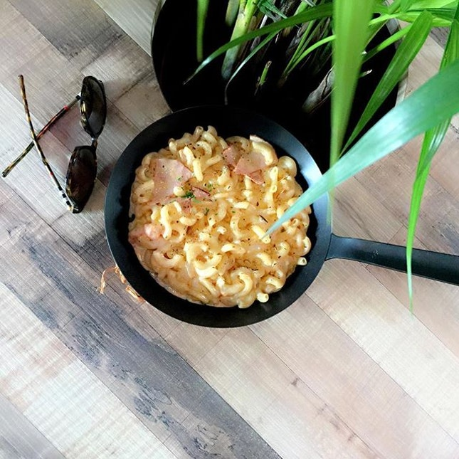 Mac & Cheese 🐭