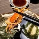 Mini crabbie 👍🏼