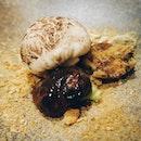 Three kind of mushrooms on the plate?