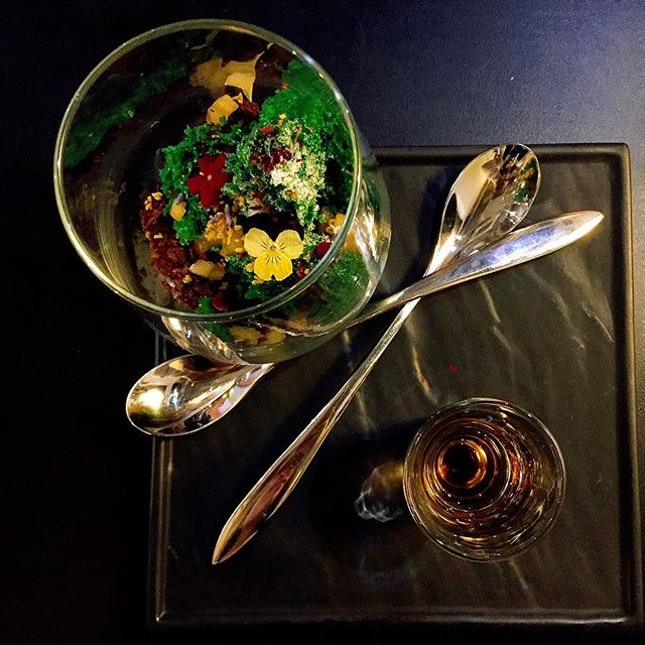 Terrarium- experience dessert at another level🌳