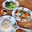 Getting my fix of chicken rice.