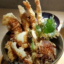 Special Tendon - Gem In Shaw