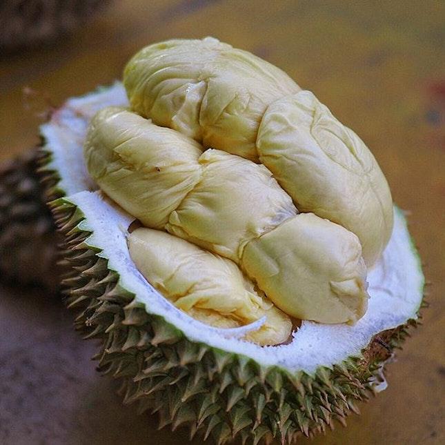 [Sin Durian] .