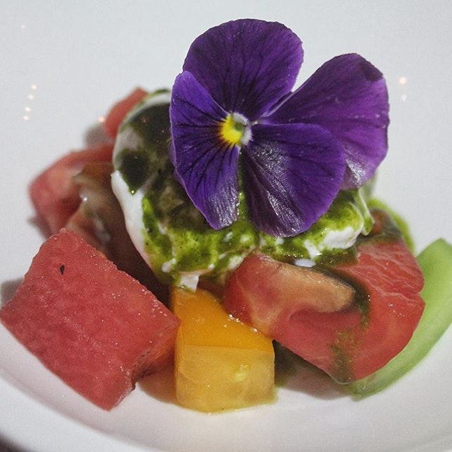 Burrata, Heirloom Tomato, Compressed Watermelon, Dressing, Orchid garnish.
