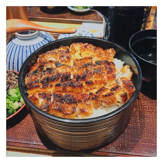 Large Hitsumabushi ($35.80++) is really no joke.