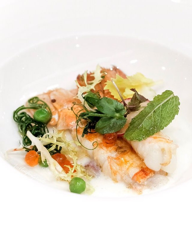 [Celebrity chefs back at RWS Fratelli] Scampo, Ravanello, Erbette e Uovo di Salmone (part of six course dinner at $168++).