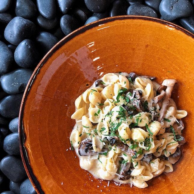 Wild Mushroom Orecchiette ($22)