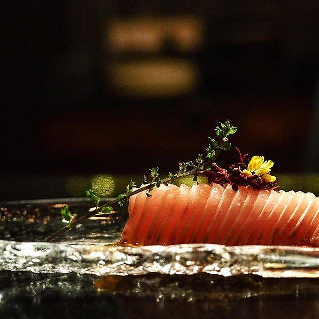 Hamachi belly sashimi.