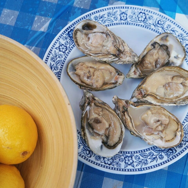 I Sea The Oysters