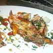 Seafood Teppanyaki(SGD $54.00) comprising Tiger Prawns with Balsamic Sauce, Hokkaido Scallops and Salmon Teriyaki.