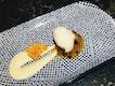 Soursop Sorbet, Orange Cream & Maracuya