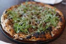 Best Truffle Pizza