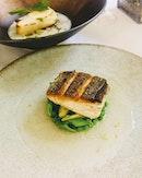 [Lewin Terrace] - Shikawa Japanese Fish with Fresh Greens.