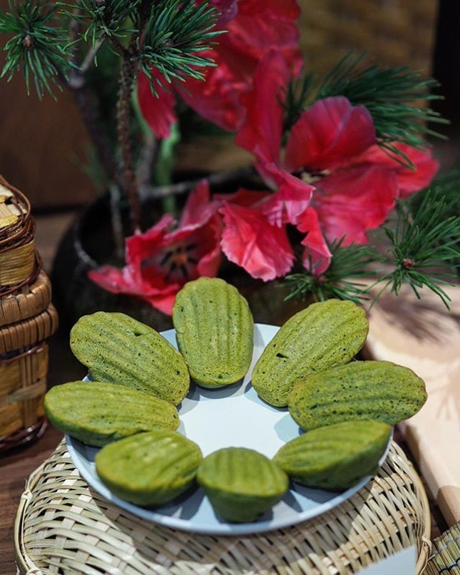 [Lewin Terrace] - The Uji Matcha Madeleine has a denser texture with a nice matcha aroma to the sugary pieces.