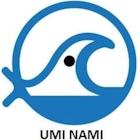 Umi Nami